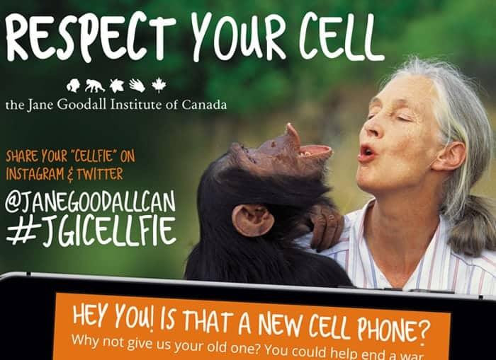 Jane Goodall Institue